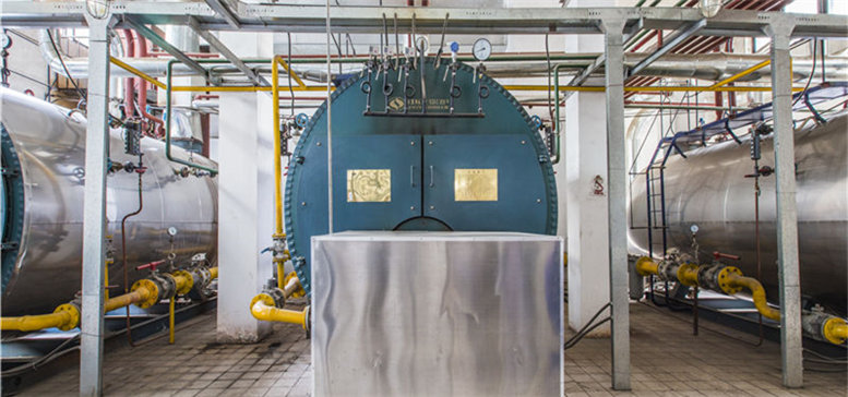 WNS Gas/Oil Fired Hot Water Boiler